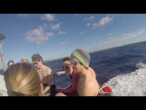 Little Cayman Interim Trip