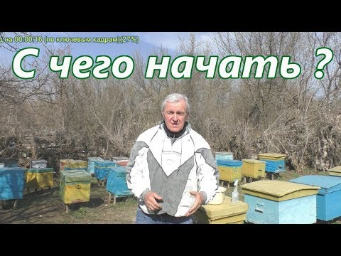 Видеоурок начинающему пчеловоду