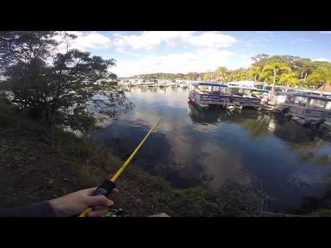 Georges River flatty | Vlog 1