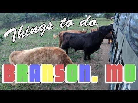 Things To Do In Branson Missouri