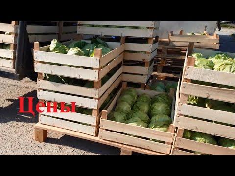 Цена на редиску, огурец, капусту, … в Копанях на рынке (Апрель)
