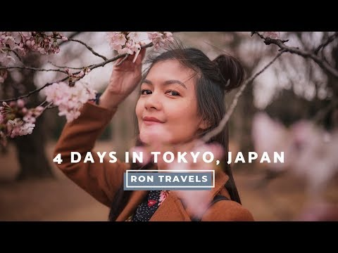 where-to-go,-what-to-do-in-tokyo,-japan-for-4-days-|-ron-does-things