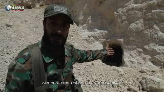 Сирия Кровавое перемирие в Северной Хаме