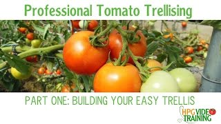 How to Build a Trellis -Easy PVC Tomato Trellis Part One
