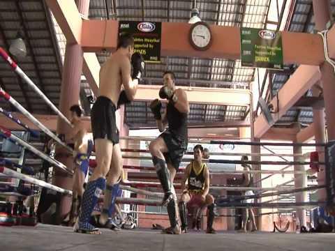 Fairtex Muay Thai Boxing Shin Guards SP5 Shin Pads