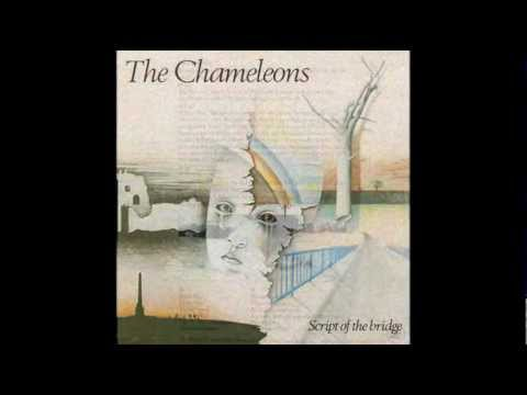 THE CHAMELEONS - Here Today