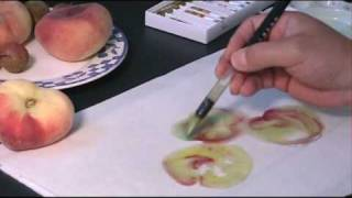 Chinese Watercolor Painting Tutorial - How to paint Donut Peach and Lychee w/ Henry Li