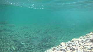 Рыбалка в Магадане июль 2015(, 2015-09-09T18:34:36.000Z)