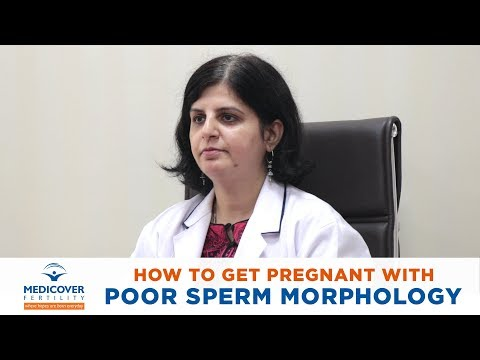How To Get Pregnant With Poor Sperm Morphology?