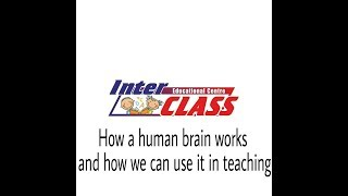 How A Human Brain Works new