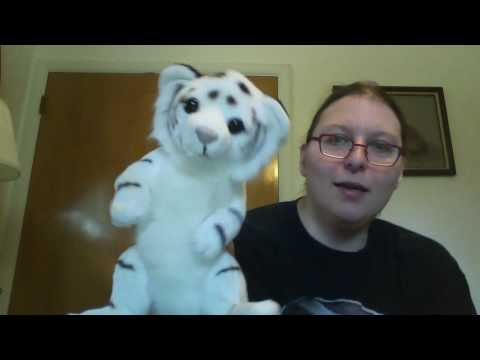 Stuffed Toy Animal Collection