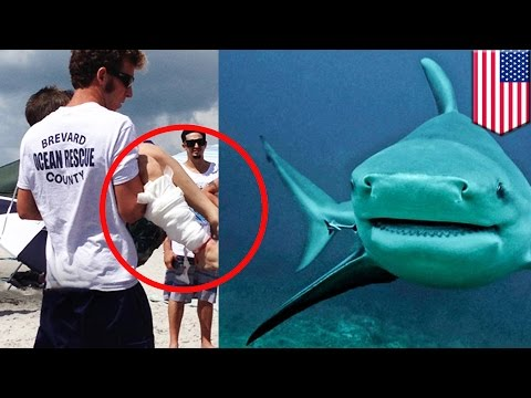 Shark Attack: Young Boy Bitten By Bull Shark Off Florida's Cocoa Beach - TomoNews