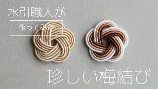 【水引職人】珍しい梅結び(作ってみた)