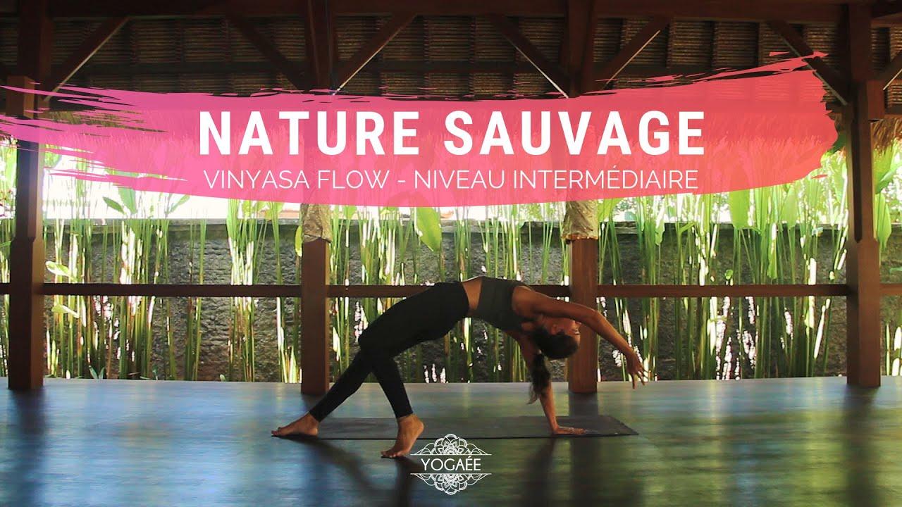 Nature sauvage - Vinyasa Yoga - Niveau intermédiaire