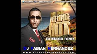 Don Omar   Feeling Hot Extended Remix By Dj Fabian Hernandez