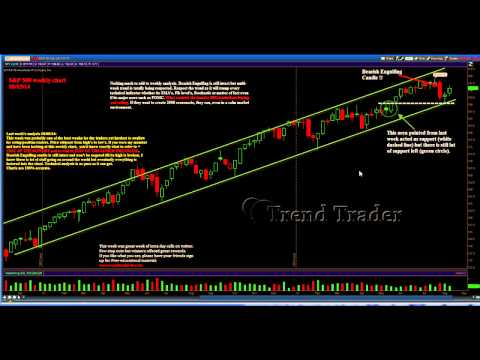 Professional S&P 500 Weekly Analysis 8/15/14