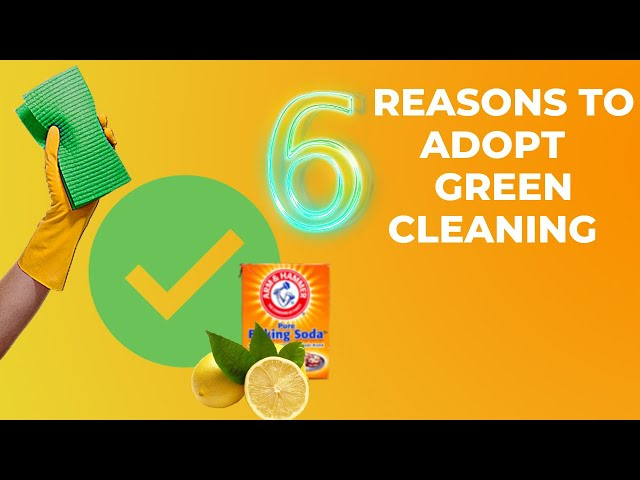 6 Reasons to Adopt the Green Cleaning Idea (Start Today)