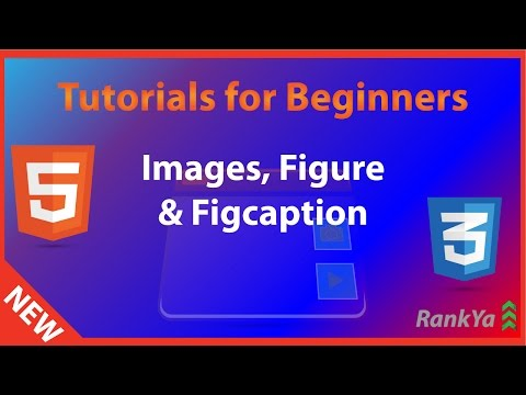 HTML5 Tutorials For Beginners Figure, Figcaption, IMG Tag