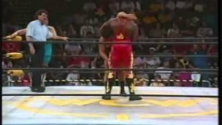 Harlem Heat (w/ Sherri Martel) vs. Scott D