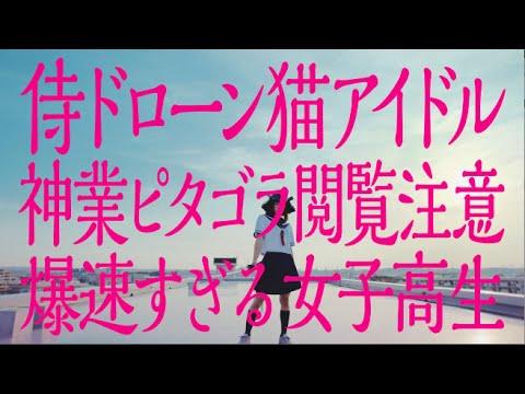「侍ドローン猫アイドル神業ピタゴラ閲覧注意爆速すぎる女子高生」(チキンラーメンCM)