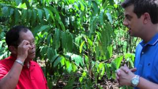 MARKET TO MASTER FARM COFFEE FARM