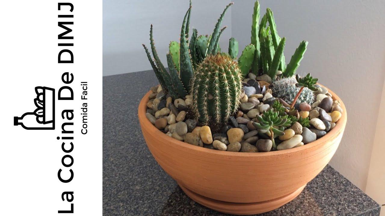 Maceta de suculentas y cactus dyi youtube for Curso cactus y suculentas
