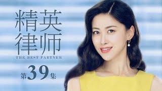 精英律師-39-the-best-partner-39-靳東-藍盈瑩-孫淳等主演