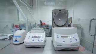 Laboratorios de Inmunohematología Biología Molecular – Hospital Nacional Edgardo Rebagliati Martins