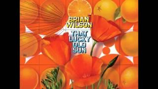 Brian Wilson Lucky Old Sun
