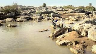 PECES EN EL DESIERTO / FISH IN THE DESERT / DES POISSONS DANS LE DÉSERT