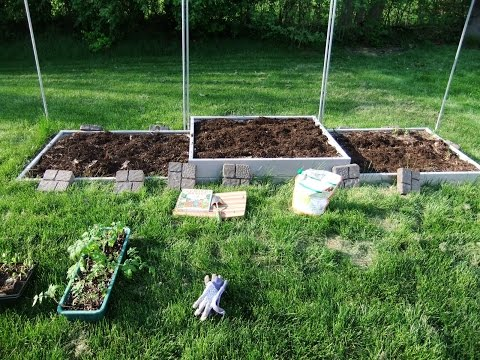 Sustainable Gardening: Learn How To Make Your Own Organic Fertilizer!