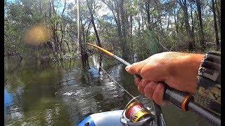 10 ПОКЛЕВОК НА КАЖДОМ ЗАБРОСЕ ПОПАЛИ В СОН РЫБАКА Рыбалка на спиннинг крупный окунь щука