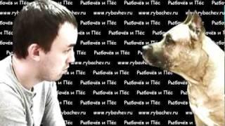 Собака повторяка [ЭПИЗОД 8]