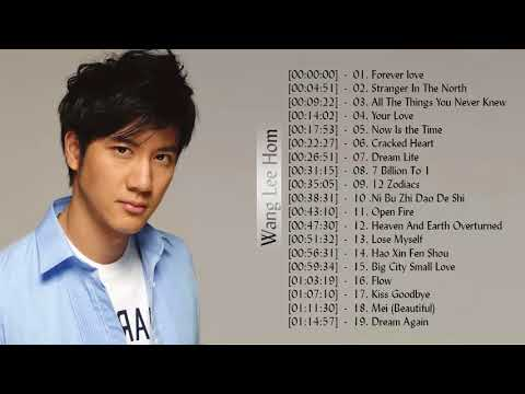 王力宏 | 王力宏 的最佳歌曲 | 王力宏歌曲合集 2018 | Best Songs Of Wang Lee Hom