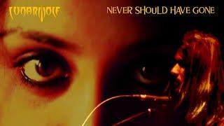 Never Should Have Gone | Original music by LunarWolf | Alternative Rock