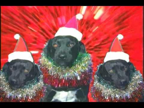 Jingle Bells Boogie.wmv