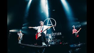 ACE COLLECTION - ROCK STAR【Live Video From AKASAKA BLITZ】
