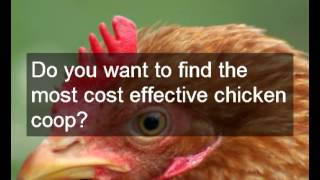Multiple Chicken Run Designs | Check Out The Different Chicken Run Designs To See Which Is Best