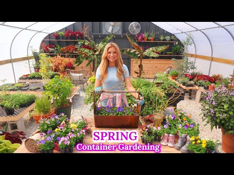Planting a Happy Spring Container | Container Gardening | Violas & Pansies //Garden Farm