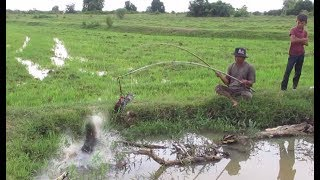 Amazing Fish Trap By Baby Duck - How To Fishing By Baby Duck -Net Fishing In Cambodia