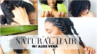 How to Grow & Hydrate Natural Hair - Aloe Vera Oil Treatment