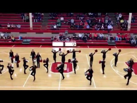 "Ottawa Township High School Poms - ""Whitney"" - January 15, 2016"