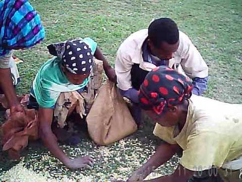 Ethiopia Benevolence