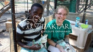 Volunteer with Animals in South Africa - Marina Interview
