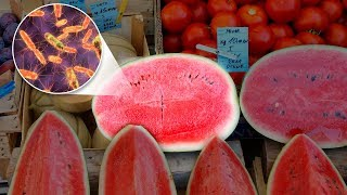 This Is Why You Shouldn't Buy Pre-cut Fruits and Vegetables