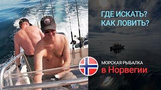 Морская рыбалка в Норвегии Где и как искать рыбу и как ловить Постановка на точке Ловля на банках