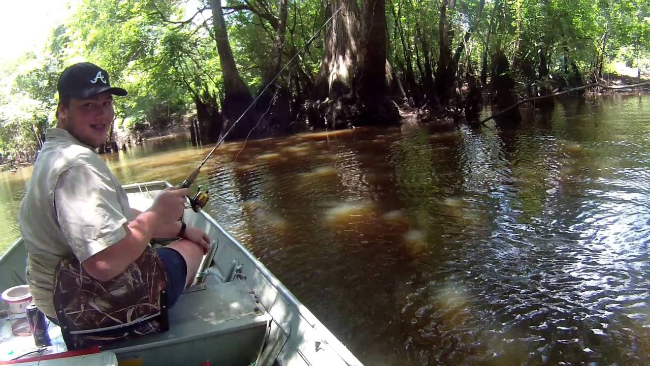 ogeechee river fishing trip 2016