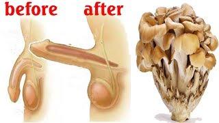 Eat Mushroom for Better Erections I Magic of Mushrooms for best sex of your life