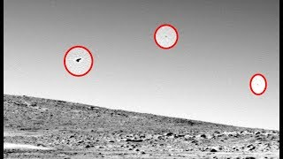 """Alien Bird"" Can Be Seen Flying Across Martian Sky In Image Captured By Mars Rover"