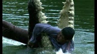 Самые опасные в мире животные (Амазония)